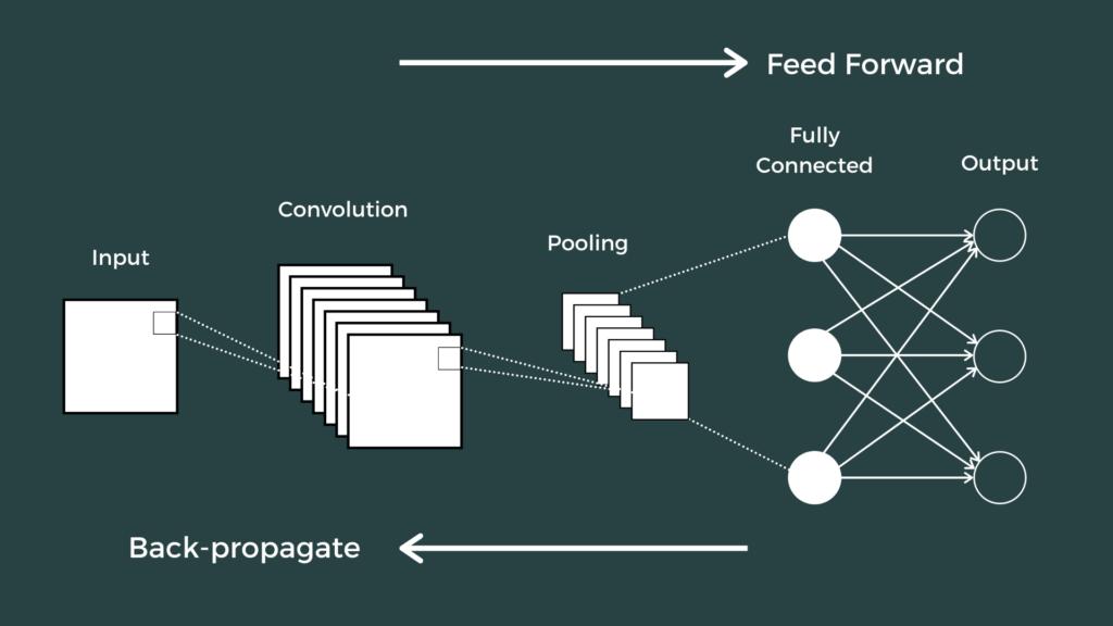 Training a Convolutional Neural Network