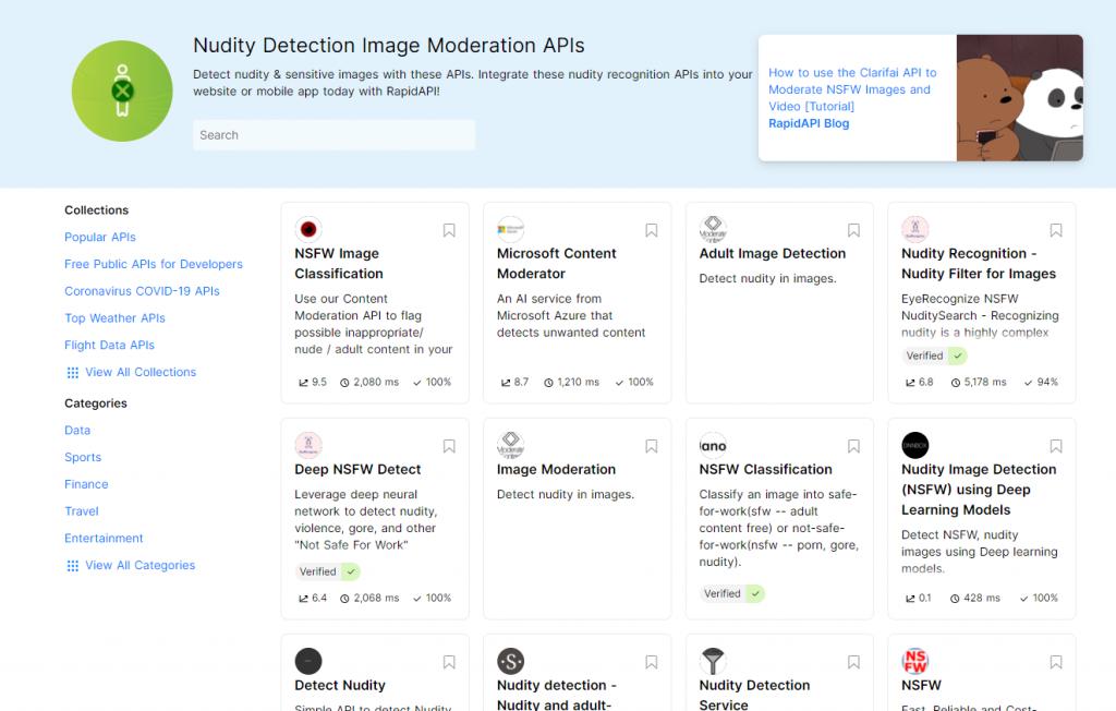 RapidAPI for Nudity Detection Image Moderation APIs - nn models